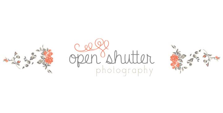 openshutter